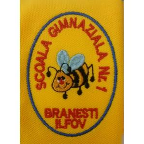 Emblema scolara